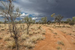 5 Day Photo Challenge   Alice Springs